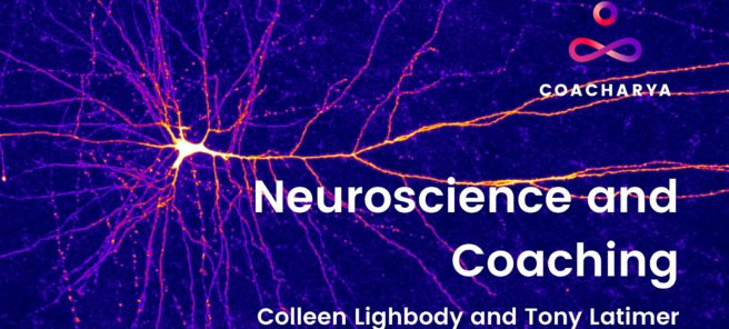 Neuroscience Webinar Series