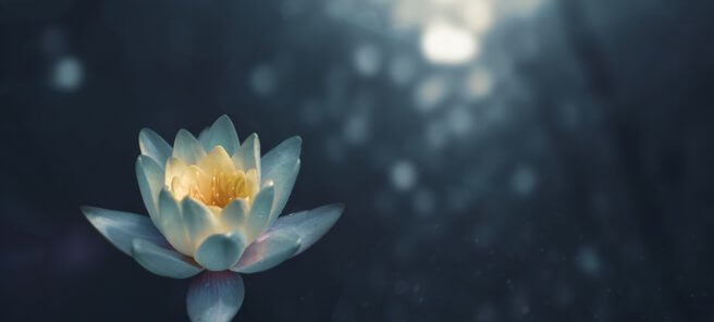 Address Self Doubt with Meditation