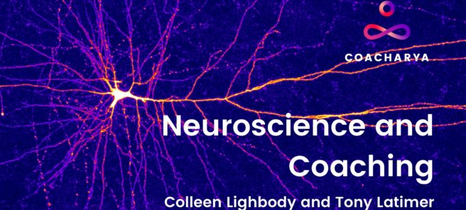 Neuroscience Webinar (Part 1 of 3)